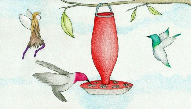 hummingbirds fairy